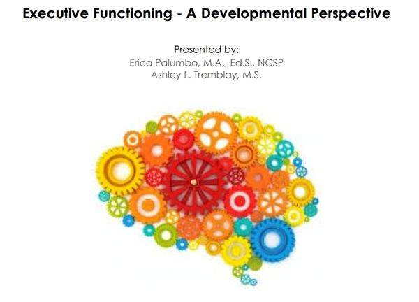 Executive Functioning-A Developmental Perspective