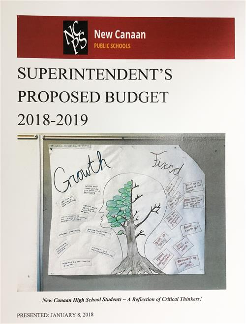 Superintendent's Proposed Budget 2018-2019