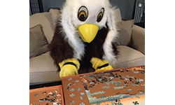 east eagle with a jigsaw puzzle