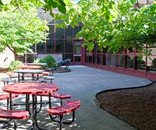 outdoor lunch area at NCHS
